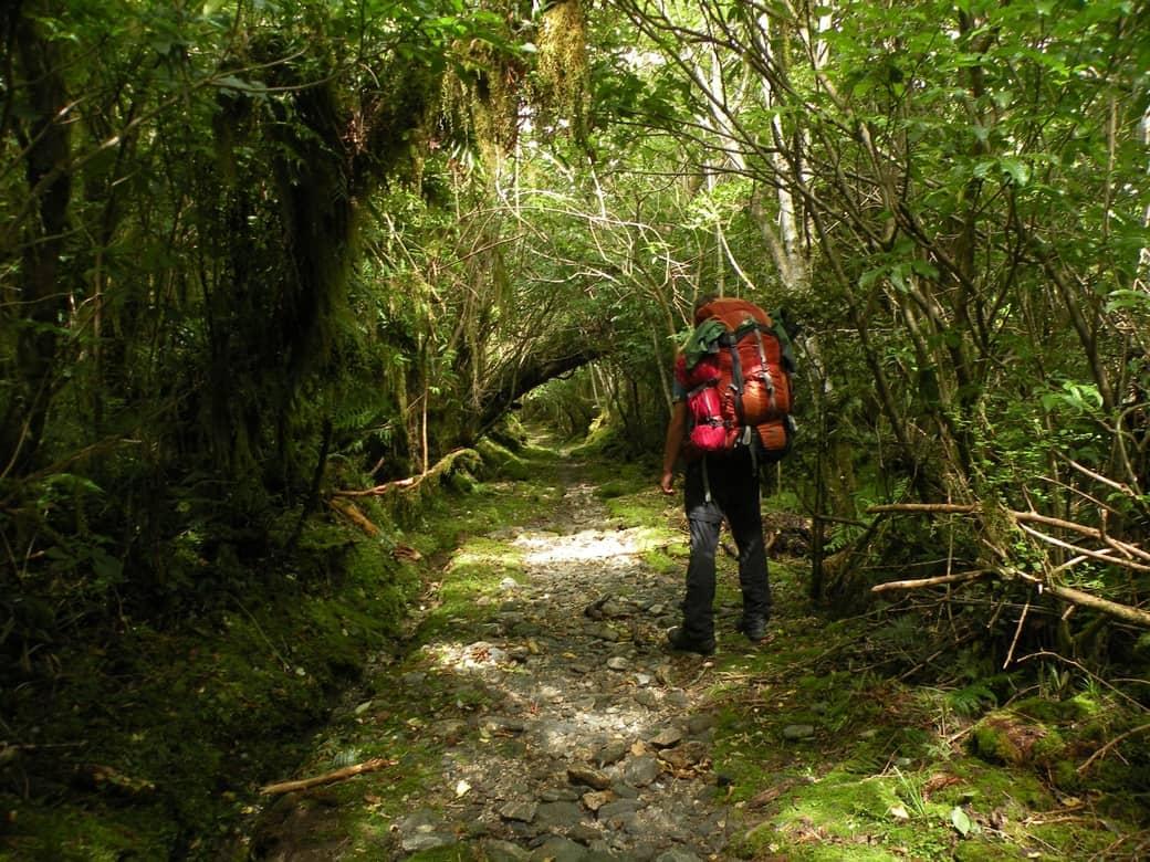 Great walks nejlepší treky na Novém Zélandu